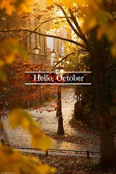 Hello, beautiful, magical October!