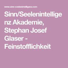 Sinn/Seelenintelligenz Akademie, Stephan Josef Glaser - Feinstofflichkeit