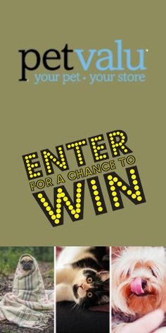 #Win a year's supply of pet food from #Petcurean & #PetValu! #Contest #Pets #Giveaway