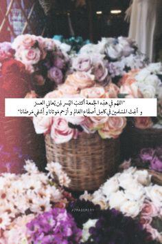 «̶ The Tulip »̶