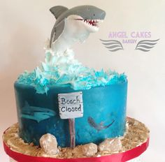 animal: shark on Pinterest  Shark Cake, Sharks and Scubas