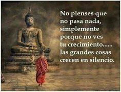 No pienses que no pasa nada, simplemente porque no ves tu crecimiento...las grandes cosas crecen en silencio. Buda