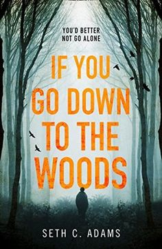 If You Go Down To The Woods – Seth C Adams 3* Review