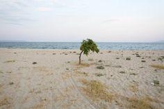 http://www.protagon.gr/?i=protagon.el.ellada&id=33748 Στο περιγιάλι το κρυφό με τα μπάζα και τ' αυθαίρετα