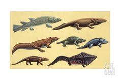 Prehistoric Reptiles, Illustration Art Print at Art.com Dinosaur Posters, Dinosaur Skeleton, Spinosaurus, Prehistoric Creatures, Scroll Saw Patterns, Stuffed Toys Patterns, Reptiles, Find Art, Framed Artwork