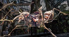 Les Machines de l'Ile (Nantes France) by Alain Warnier on 500px