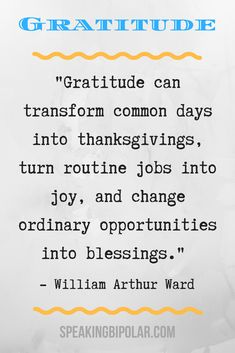 Spotlight on Gratitude: 15 Inspiring Quotes Will Make You Stronger (Part 1)