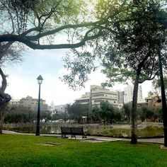 Parque el Olivar San Isidro Lima Perú