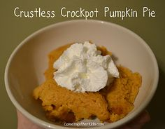 Crock O pumpkin pie!  1 can of pumpkin puree (15 oz)   1 can of evaporated milk (12 oz)  3/4 cup white sugar  1/2 cup Biquick mix (or other similar mix)  2 eggs  2 tbsp butter, melted  2 tsp pumpkin pie spice (original recipe calls for the individual spices)  2 tsp vanilla extract