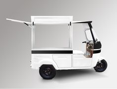 TUKTUK TRANSPORTER ! Showroom Triporteur et tuktuk Mazaki Marseille Lyon - Mazaki Motor