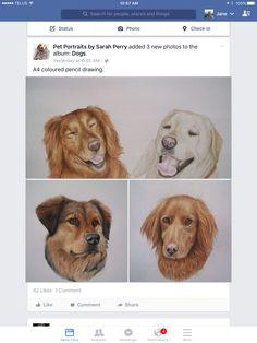 Clevedon Artist