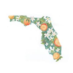 Go to Florida every spring break. Clearwater Florida, Sarasota Florida, Florida Girl, Florida Living, Old Florida, Vintage Florida, Florida Home, Kissimmee Florida, Sanibel Island