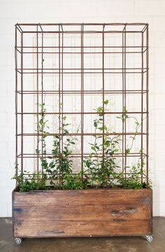 Vintage wooden crate with wheels and trellis