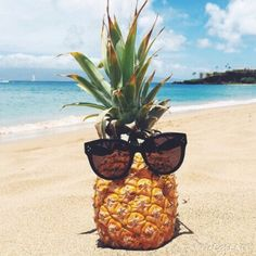 An amazing pineapple on the beach waiting to be eaten