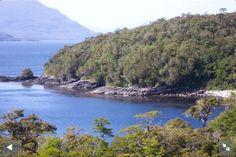Bosques de Ilihue, chile