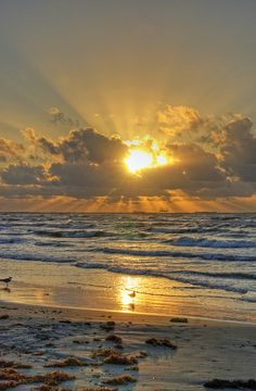 Sunrise at Port Aransas,Texas