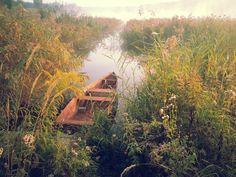 boat, fog, lake morning fog, summer