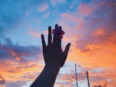 """736 curtidas, 42 comentários - N i c o l e  V i e i r a 🌸 (@heynicolev) no Instagram: """"Minha reação ao ver esse céu: saí gritando loucamente pelo quintal de casa, sério queria que a foto…"""""""