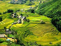 How to enjoy a short holiday in Vietnam ? #vietnamtours #vietnamholidays #holidayinvietnam #Vietnamtravelguides