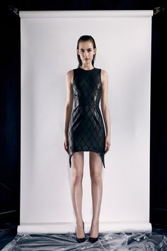 Cushnie et Ochs - Resort 2014 - Look 23 of 25