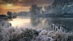 Bing Image Archive: River Avon in winter, Worcestershire, England (© nagelestock.com/Alamy)(Bing United States)