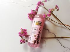 #ginseng#acai#toner#blog Shampoo, Cosmetics, Bottle, Blog, Flask, Blogging, Jars