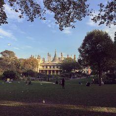#paviliongardens #gardens #park #royalpavilion #thepavilion #theroyalpavilion #brighton #eastsussex #autumn #autumnsunshine #seagull #sussex #england #blighty by frostie7878 #brighton