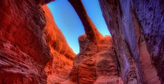Arches*