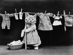 """""""Hanging up the Wash.""""  Image: Harry Whittier Frees /Library of Congress 