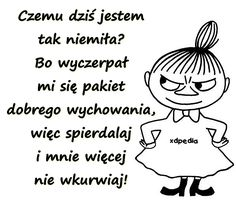 Czemu dziś jestem tak niemiła? Bo wyczerpał mi się pakiet dobrego wychowania, więc spierrdalaj i mnie więcej nie wkurrwiaj! Weekend Humor, Funny Memes, Jokes, Badass Quotes, Wise Quotes, Man Humor, Beautiful Words, Motto, Sarcasm