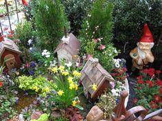 Some cute mini gardens!!gnometown2-spring2008