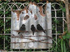 Tin Birds on wire & rusty corrugated iron