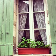 Window - Bergerac - France