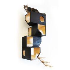 cat climbing tower by catissa