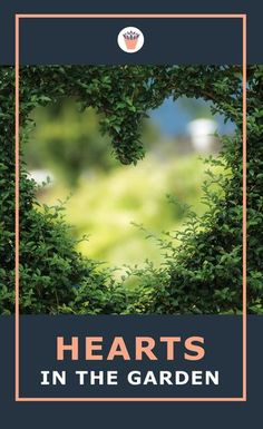 Carving or pruning the shape of a heart in a hedge, or growing ivy on a heart shaped trellis, there is no lack of ways to use hearts in your garden. Trees may naturally form a heart shape but it's always spectacular when you see it in nature. Crafts of all kinds lend themselves to creating hearts. #craftideas #succulentsheartshaped #hearts Moss Garden, Garden Trees, Small Succulents, Succulents Garden, Stone Heart, Nature Crafts, Topiary, Flower Beds, Hedges