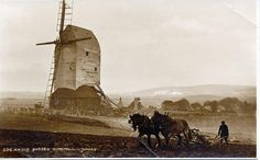 The windmill fell into disrepair so was demolished in 1912 and tractors replaced the plough horses. End of an era.