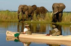 Create lifelong memories, exploring the Zambian wilderness; by kayak and foot while based in luxury tents on the banks of the Zambezi River. Customise & book your tour online, Skype or call us toll-free for more info >> Canoe Camping, Canoe Trip, Largest Waterfall, African Safari, Africa Travel, Day Tours, Rafting, Luxury Travel, National Parks