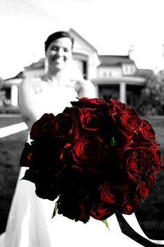 Dark red roses