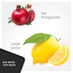 Nº 67 Kadın Parfümü #usocosmetics, #kadınparfümü, #perfume, #parfüm, #parfum