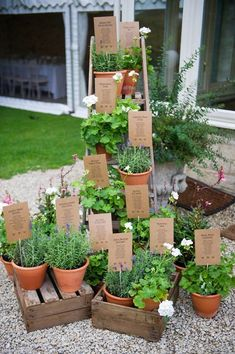 For your garden wedding, arrange your tables by herb.  Stake guest names into the soil inside.  With lavender, basil, and lemon verbena, we guarantee that this seating chart will draw your guests in with its amazing scents!