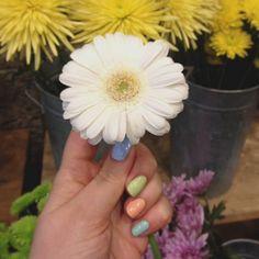 spring nails
