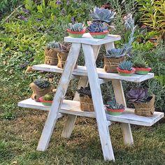 Rustic Cupcake Ladder Table Display Shelf