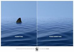 Humans kill 100 million sharks a year [while sharks kill maybe 10-15 humans].  Sharks are vitally important apex predators that have shaped marine life in the oceans for over 400 million years. They are essential to the health of the planet, and ultimately to the survival of humankind.  Unless we'd like to swim in oceans loaded with jellyfish, maybe we oughta stop long-lining them, finning them and wearing their pretty teeth around our necks.