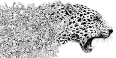 Animorphia: An Extreme Coloring and Search Challenge: Kerby Rosanes: 9780147518361: Books - Amazon.ca