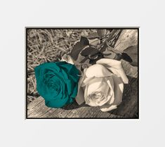Teal Wall Decor | Brown Teal Rose Flower Wall Art Home Decor Picture | eBay