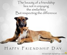 Dgreetings - Friendship Day Saying Card