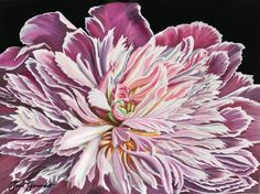 Pink peony painted in watercolor by Jane Girardot, posted on community.art-is-fun.com