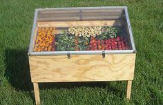 Dry apples and tomatoes with a DIY solar oven