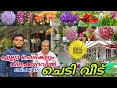 Flower Plant Nursery In Kerala   Plant Nursery Visit   Eva Garden Chungathara   Vasi Vlogz  Vlog 106 - YouTube Eva Garden, Garden Online, Plant Nursery, Outdoor Plants, Kerala, Planting Flowers, Frame, Youtube, Picture Frame