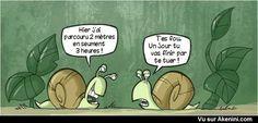 Akenini.com - Images drôles animaux - Funny cartoons animals ➛➛➛ http://www.diverint.com/humor-grafico-picaro-thordesillas